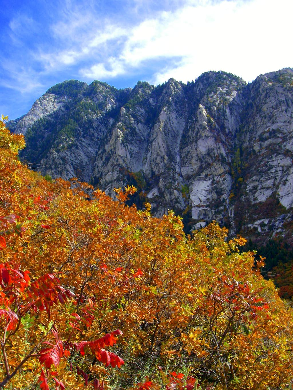 Little Cottonwood Canyon Fall Colors