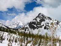 Bill's Peak Over Trees