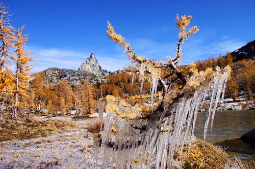 Ice, golden larches, and Prusik Peak