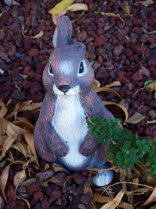 Martian One-Eared Rabbit
