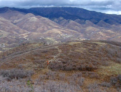Hunting near Dale Peak