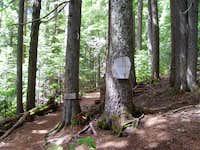 Entering the Buckhorn Wilderness