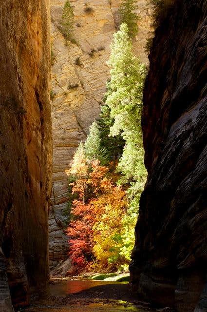 The upper Virgin Narrows in October
