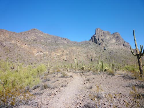 """Razorback Ridge"" and Picacho Peak"