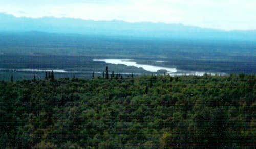 Tanana Valley View