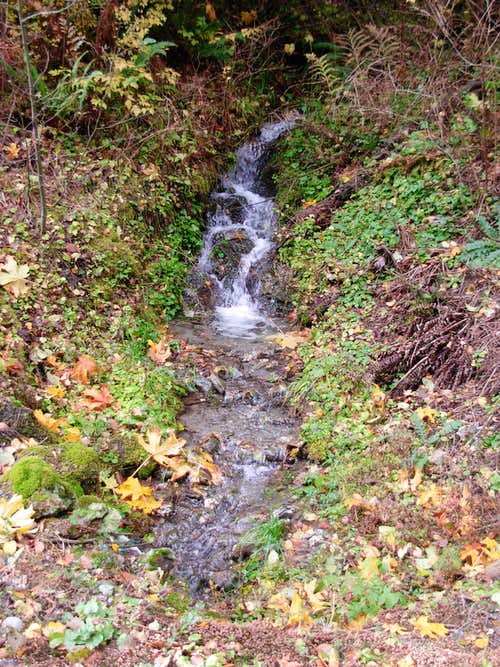 Stream On Anderson Mountain