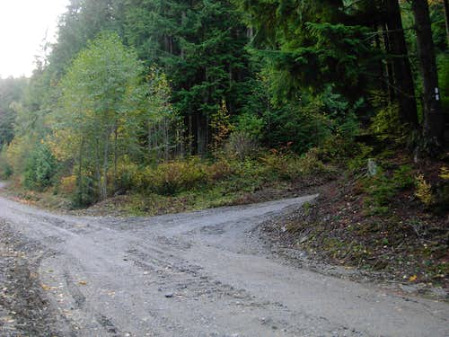 PNT - Bloedel Logging Road