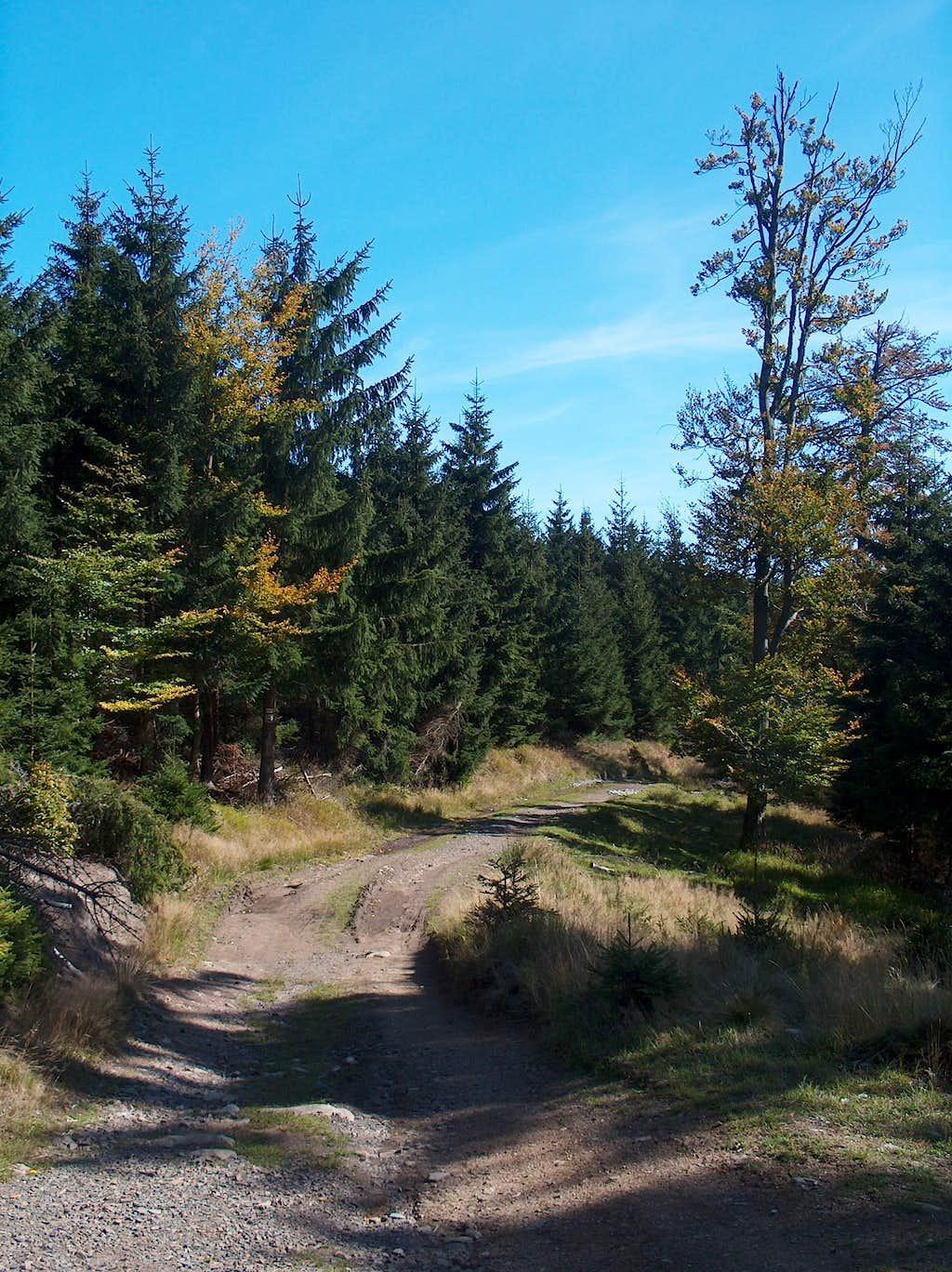 Hiking Wielka Sowa from Lasocin