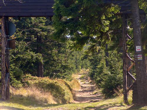 Heading to the top of Wielka Sowa