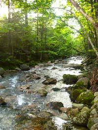 Near Roaring Brook Campground