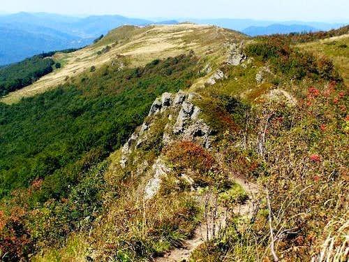Ridge of Mount Bukowe Berdo (1311 m)