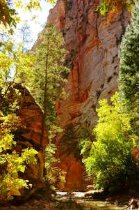 The upper Virgin River Narrows