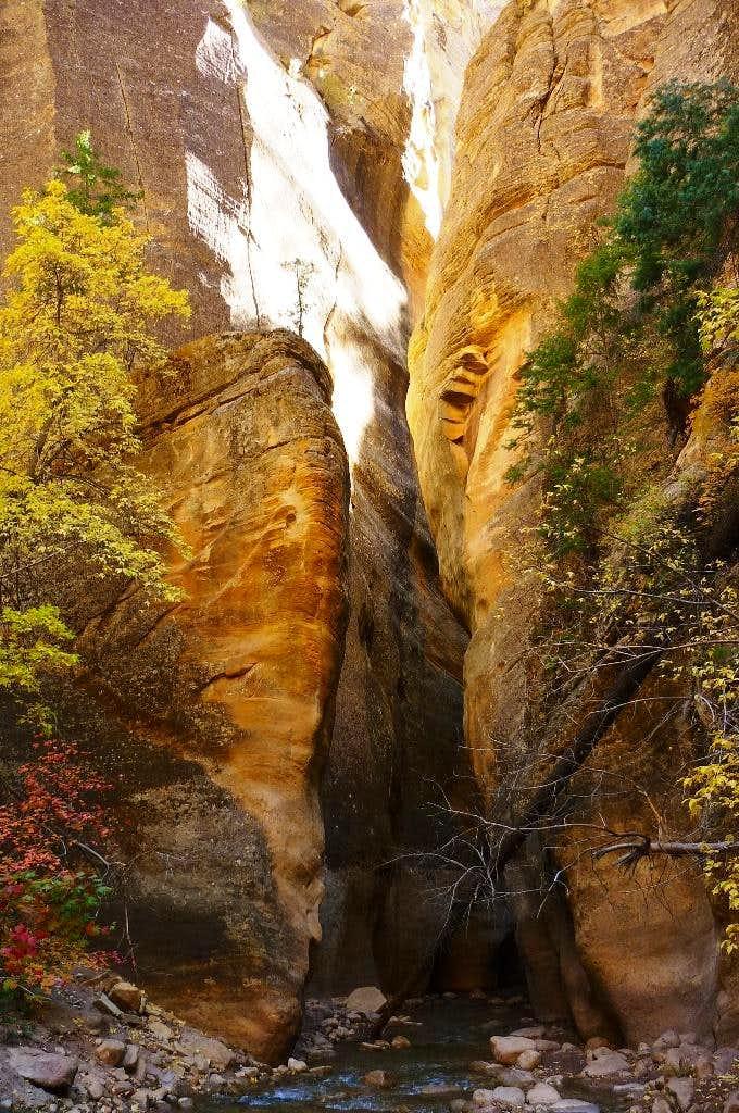 The upper Virgin River Narrows