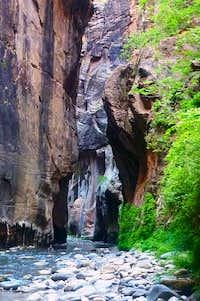 The Virgin River Narrows