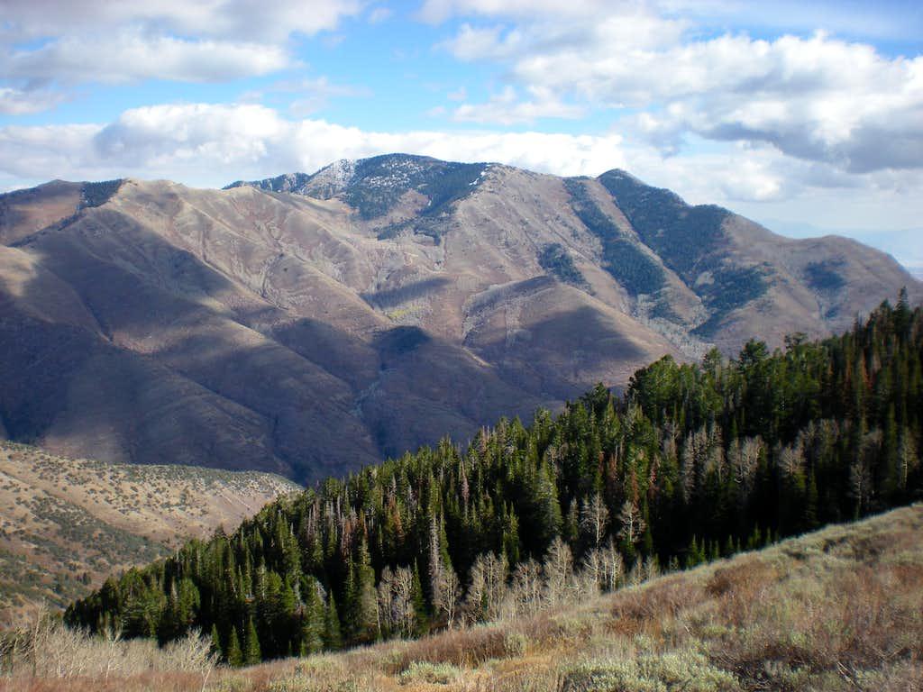 Flat Top Mountain (10,620')