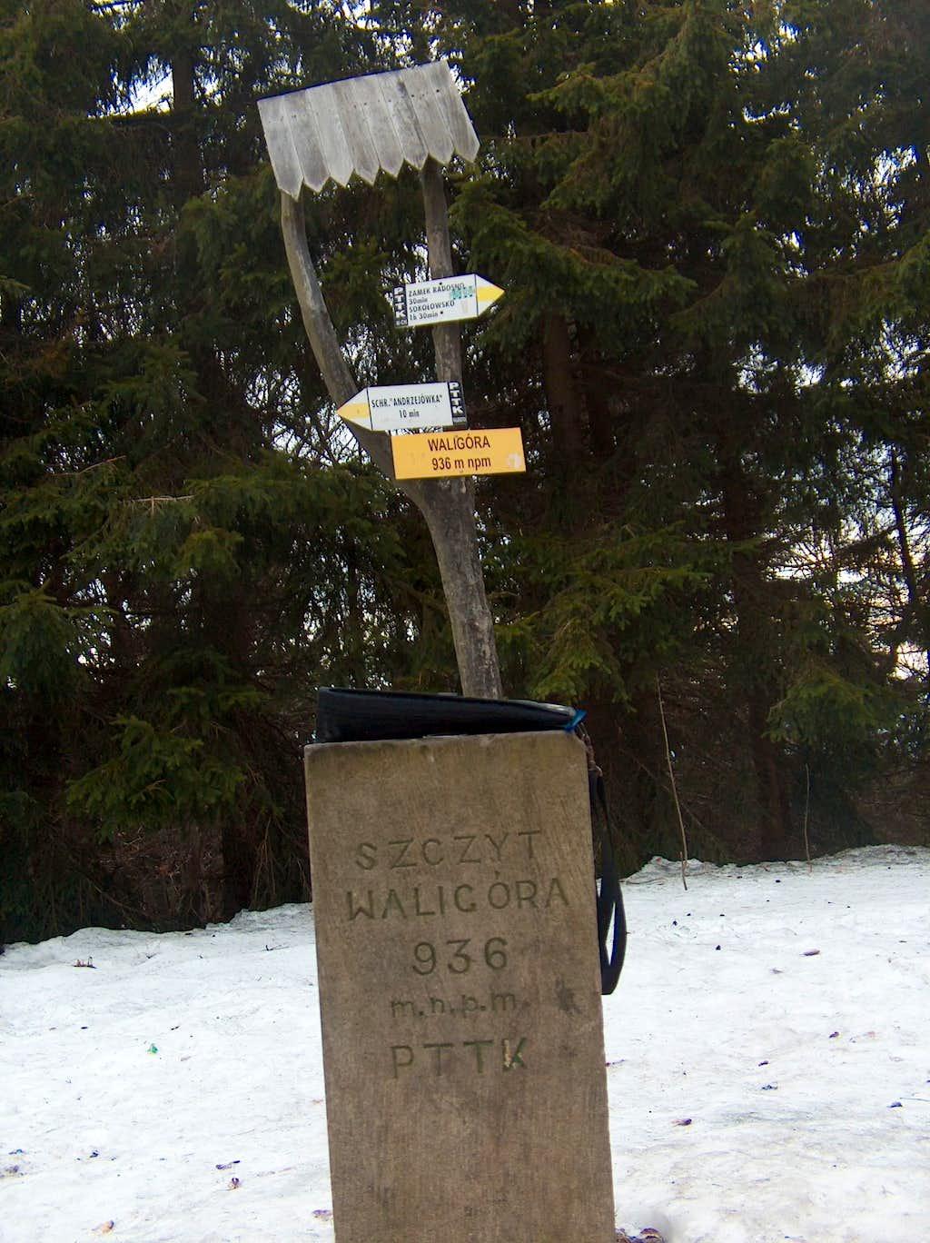 Top of Waligóra