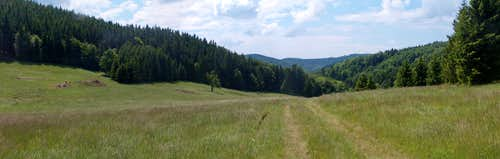 Trails on Waligóra