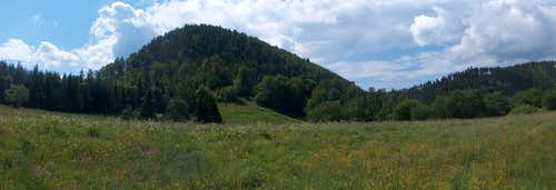 The top of Waligóra from Andrzejówka hut