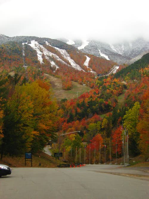 Whiteface in autumn