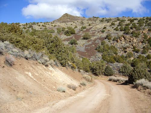 The first ridge to Virginia Peak