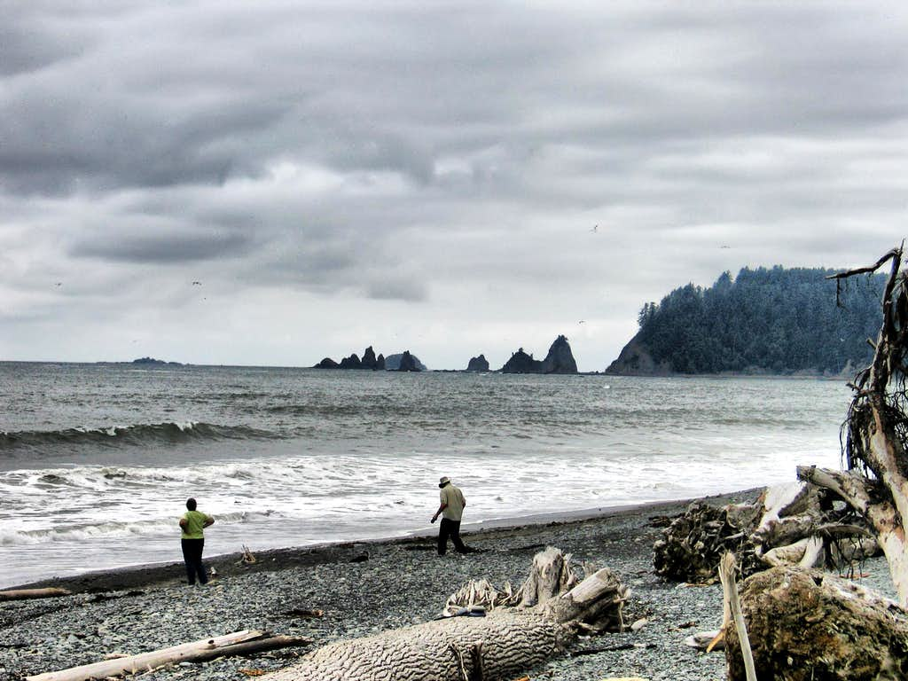 Gray Coastline