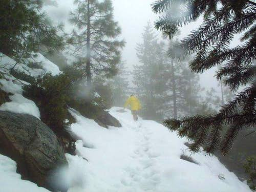 The trail after a snow storm,...