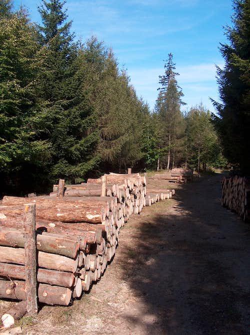 East trail to Skalnik