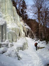Ny Ice