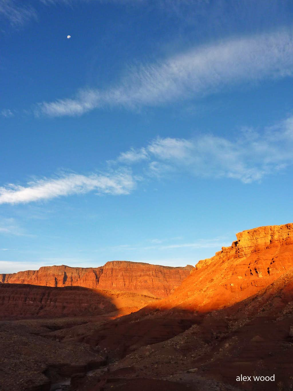 Desertglow on the Vermilion Cliffs with the Moon