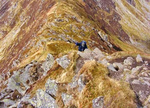 Lolli climbing Pen yr Helgi Du