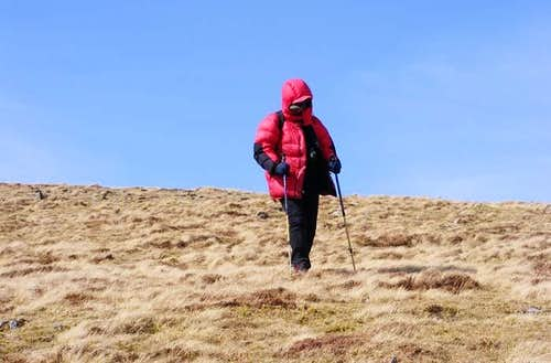 Lolli feeling the cold wind in Snowdonia
