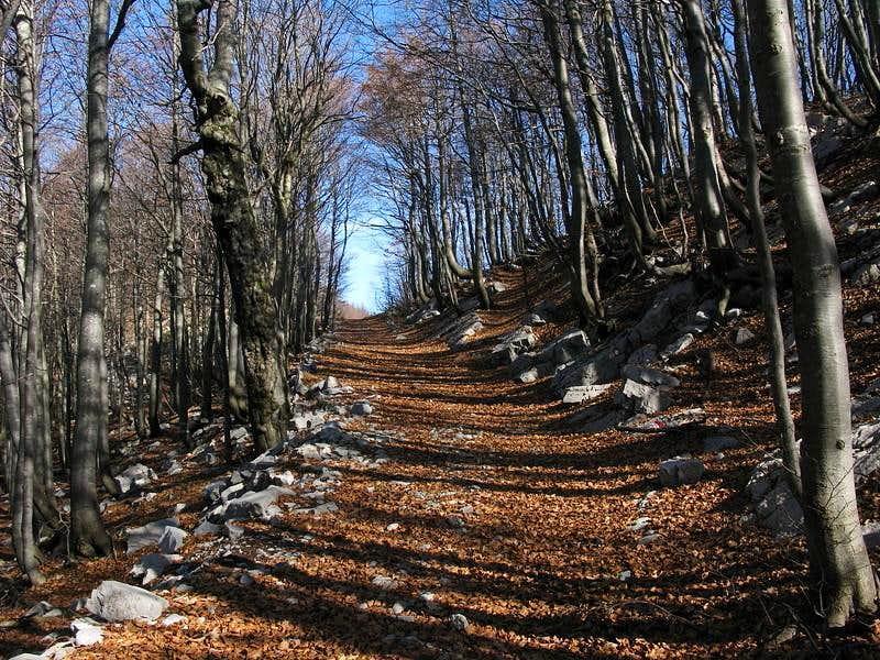 Approaching Rimska Vrata pass