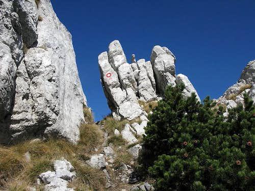 Detail from Snježnik ridge