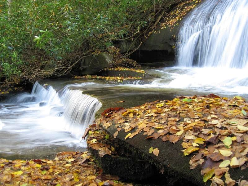 Leaves Below Falls