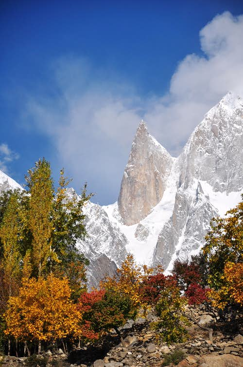 Lady Finger 6000-M (Hunza Pakistan)