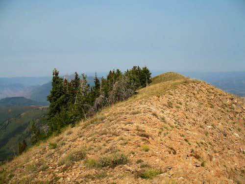 Loafer Mountain (UT)