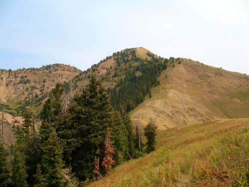 Loafer Mountain (UT)