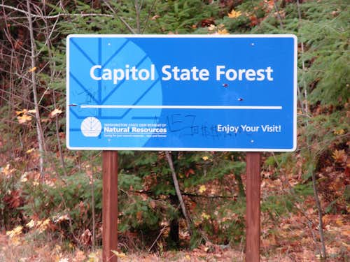 Capitol State Forest