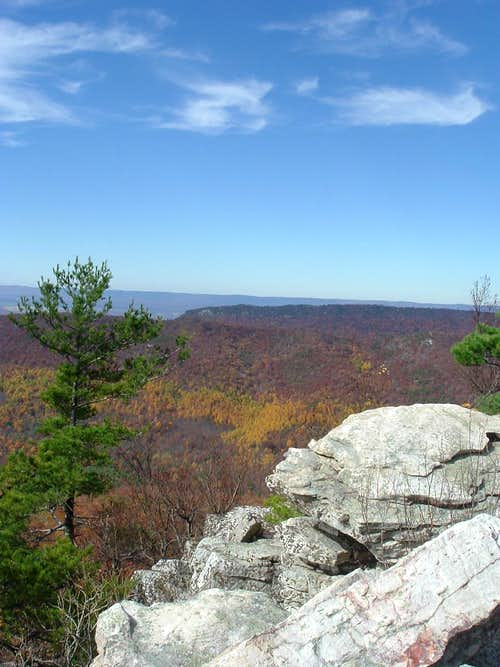 Looking West from Duncan Knob in October
