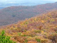 Looking East from Duncan Knob in October