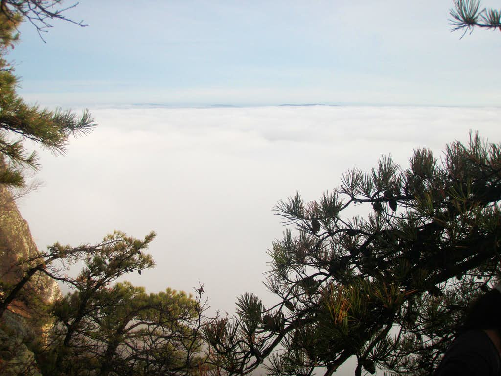 Above the Clouds in the Gunks