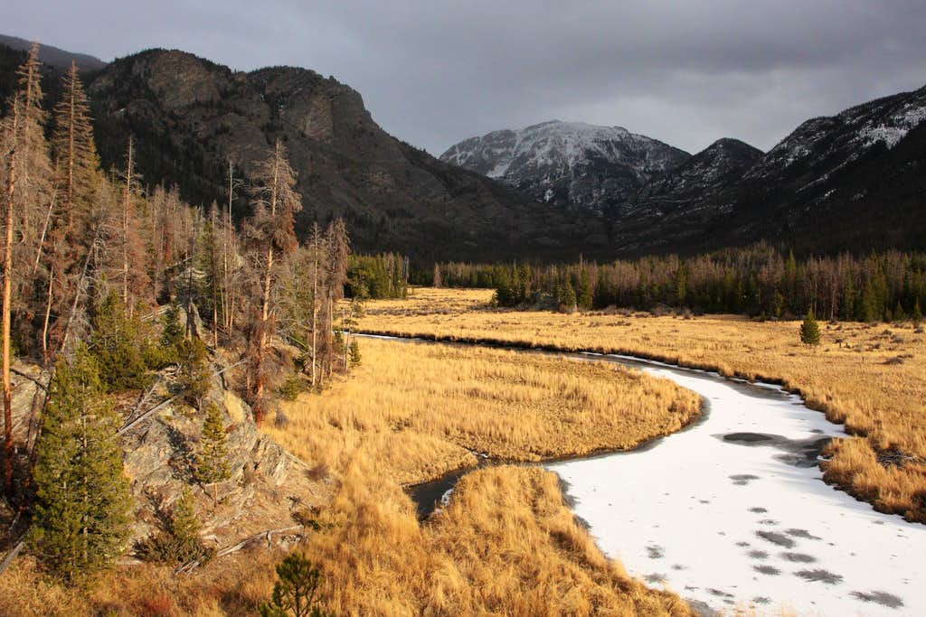 East Meadow (RMNP) - Late Afternoon Light