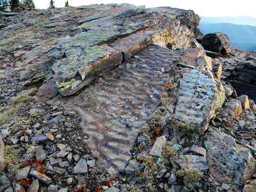 Ripple Rocks