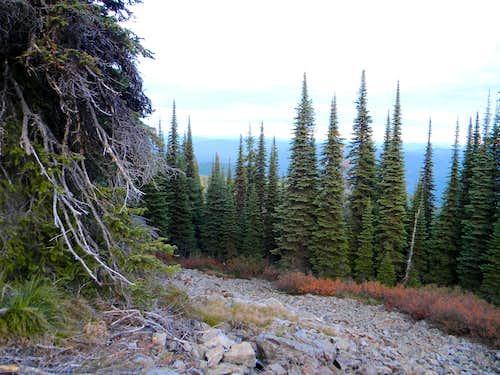 East Side of Summit Ridge