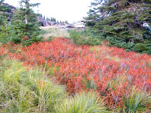 Color Near the Summit