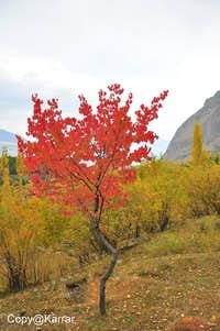 Autumn in Upper Kachura Baltistan