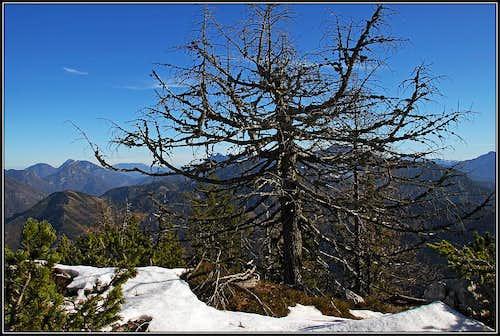 On the summit ridge of Rjautza/Rjavca