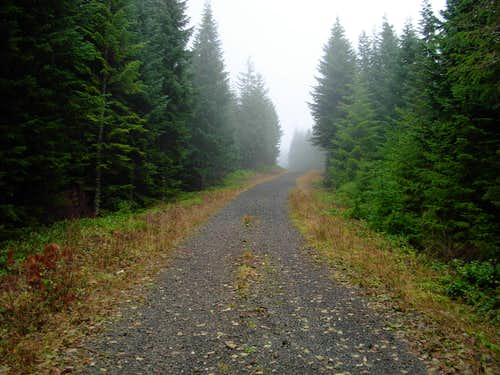 Larch Mountain Road