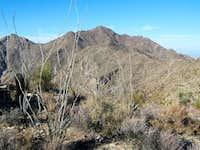 Sierra Estrella AZ
