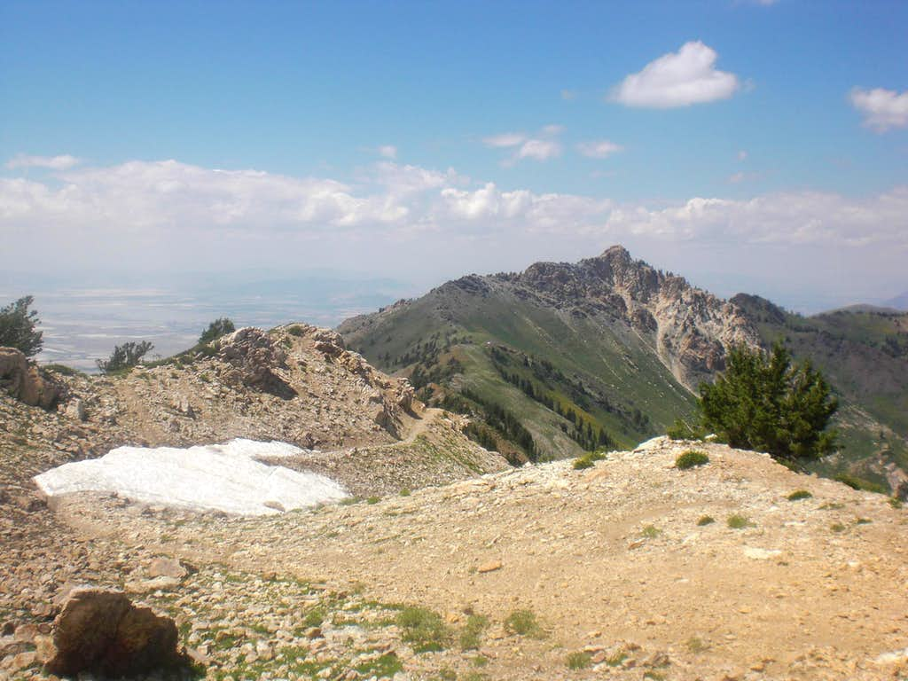 Willard Peak from Ben lomond
